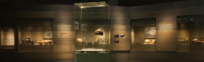 museudelleida02